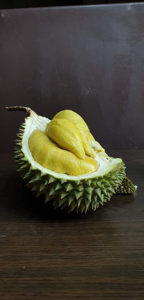Balestier Durian Delivery | Durian Express Delivery